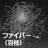 ダウンボール羽枝