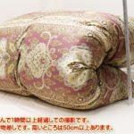 ダブル羽毛布団西川ポーランド産完熟マザーグース430DP増量