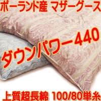 jp-8548