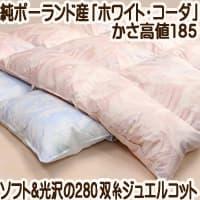 jp-w8582