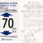 西川ポーランド産グース羽毛布団ゴアラミネートnl-159