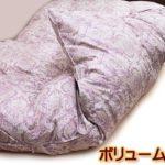 クィーン京都西川2層羽毛布団kn-2269ql