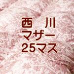 西川羽毛布団4e5870pm-25b