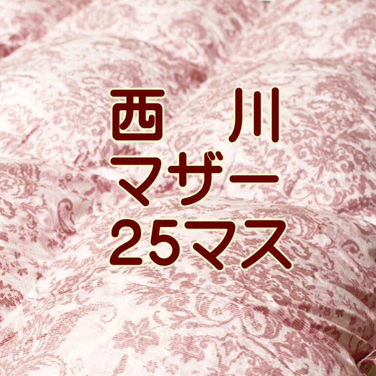 4e5870pm-25b